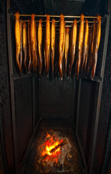 Two-thirds of eels processed in New Zealand are shortfins—here being smokedfor export—but the remainder are longfin eels classified asendangered.