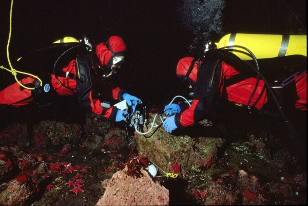 """Despite the challenging conditions, NIWA scientist Simon Thrush says that diving on the Antarctic ice shelf can in fact be safer than on New Zealand's coasts. There are no boats to deal with, no moorings, no instability, no miserable seasickness, and gear can be trucked across the ice, while the divers drop in by helicopter or Ski-doo. Before the advent of drysuits in the 1960s, divers wore multiple wetsuits and just had to tough it out. """"In contrast, the scientists today are pretty pampered,"""" says Thrush."""