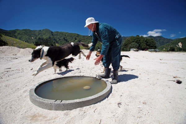 "Three weeks after the flood, Mike Robertson's sheepdog skips over a water butt; an oasis in the sand where there once was a green paddock. With tens of thousands of tonnes of the gritty granite spread across his land, it's clear the clean-up will be measured in years, rather than months. ""We've got lots of culverts to put back in, then we have to grass the paddocks, and put up fences to restore water supplies. There's a long way to go."""