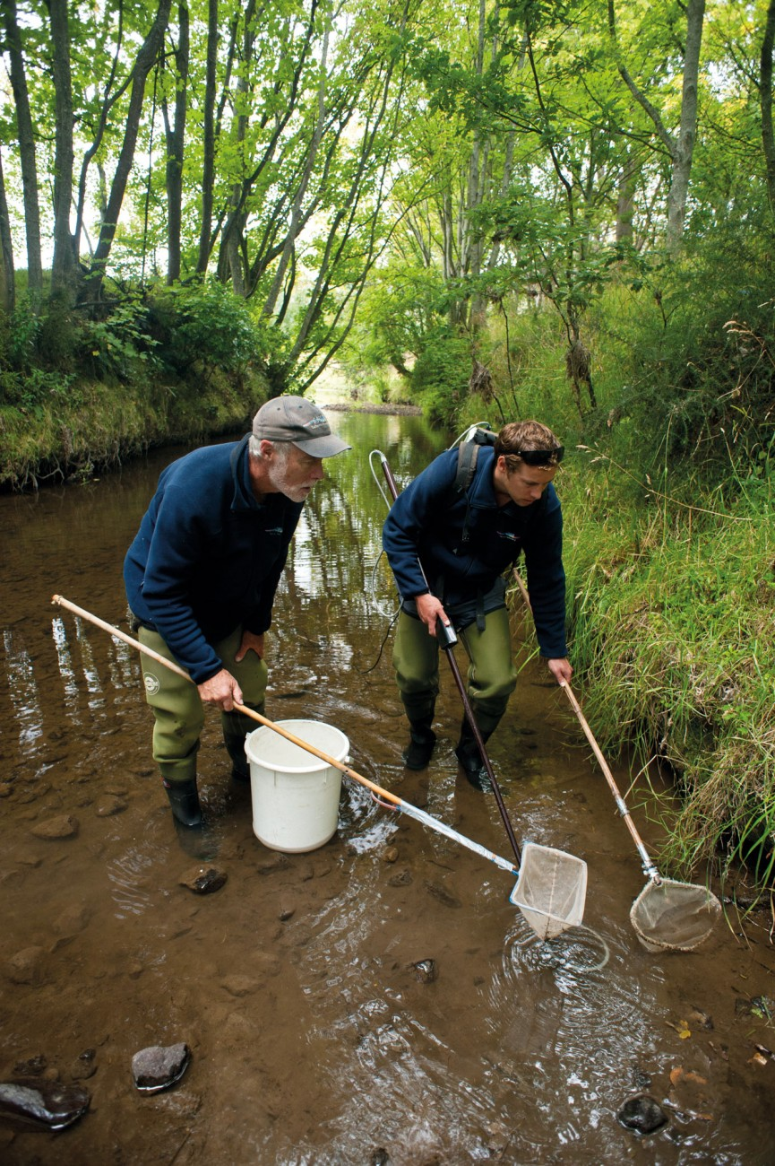 NIWA freshwater fisheries scientists Don and Phillip Jellyman (father and son) use electro-fishing gear to search a tributary of the Okuti River in Canterbury, to net filter-feeding larva buried in the mud. Don Jellyman has been involved in studies of eels and other native fish species, especially lampreys, throughout his scientific career, with a particular interest in the migrations between fresh and saltwater that are undertaken by many native fish species.