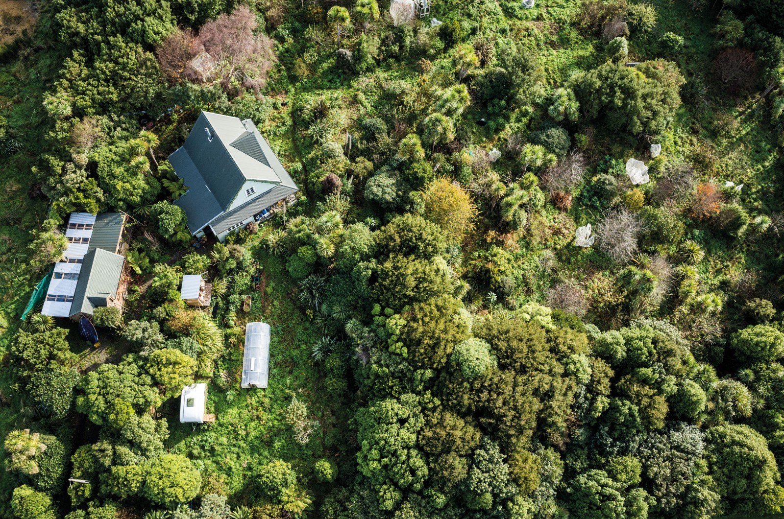 Robert and Robyn Guyton's 'food forest', in Riverton, Southland, envelops their house in fruiting trees, shrubs and vines, supported by a thick understorey of herbs, vegetables and flowers. The forest, established on their two-acre property within just 20 years, now includes some 460 plant species—many of them heritage European varieties sourced from old orchards around the area—and provides more than half of what the Guytons eat.