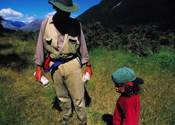 Department of Conservation worker Stephen Phillipson sets off with his son Tira and a couple of cartons of eggs to bait stoat traps in the Rawdon Valley in the east of the national park. One of only two known populations of the newly recognised and rare orange-fronted parakeet inhabits this valley.