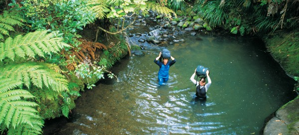 Packs aloft, the author (left) and Ruby Jones, a freshwater ecologist, negotiate one of many fern-fringed pools in the upper section of the Opanuku.