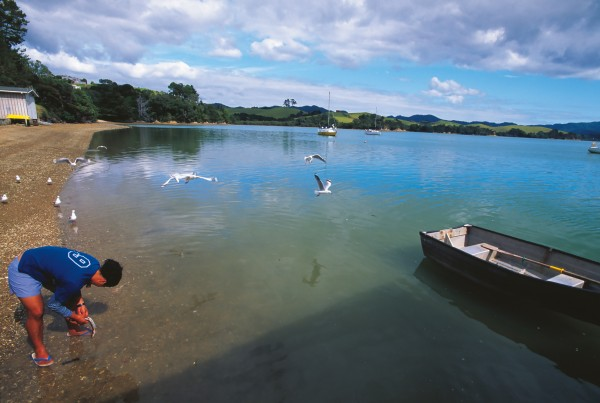 The tranquil waters of Whangaruru Harbour provide a handy supply of food for local iwi.