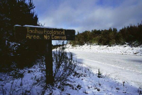 Most remaining frost flats such as Taahau in Whirinaki Forest now have some sort of formal protection.