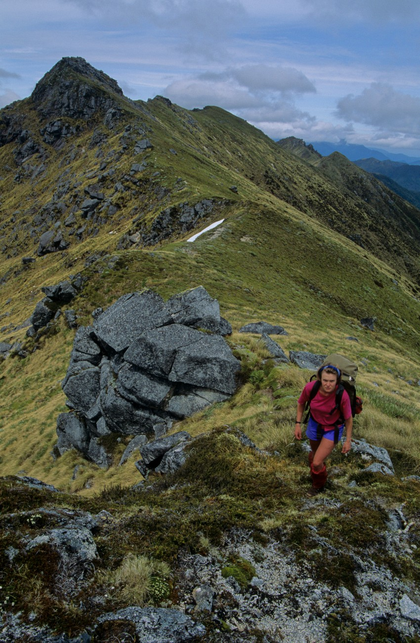 Kiwi hunter Jo Stilwell tramps over the Victoria Range east of Reefton. No sign of kiwi could be found in this area despite three months of searching through more than 200,000 hectares of remote forest and alpine vegetation.