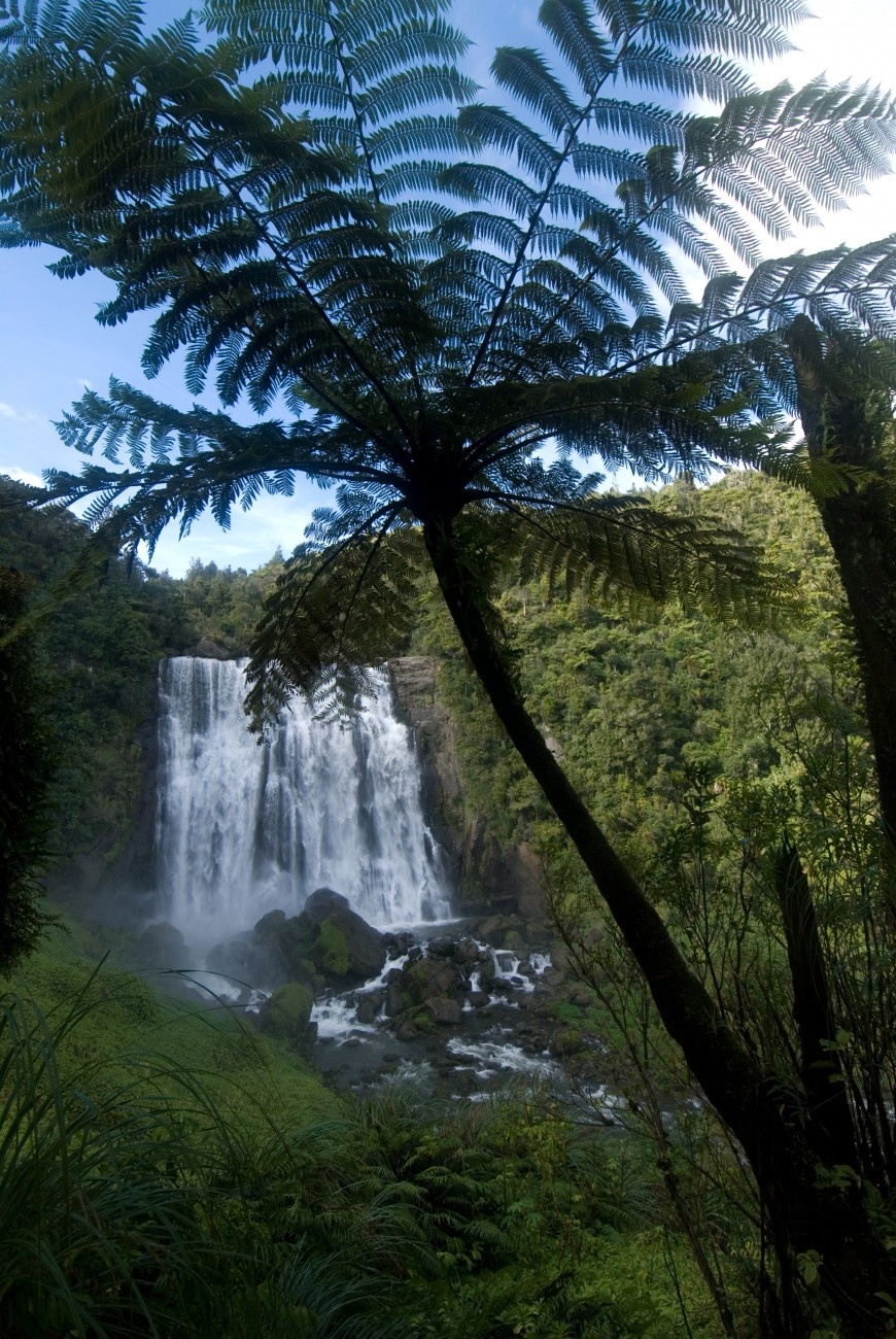 The 30 m high Marokopa Falls lie between Waitomo and the quiet west coast bach settlement of Marokopa.