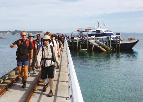 The daily cargo of day-trippers from Auckland alights on Tiri's dock. Among them are birdwatchers, school groups, tourists, DOC staff and a few volunteers to conduct the guided tours.