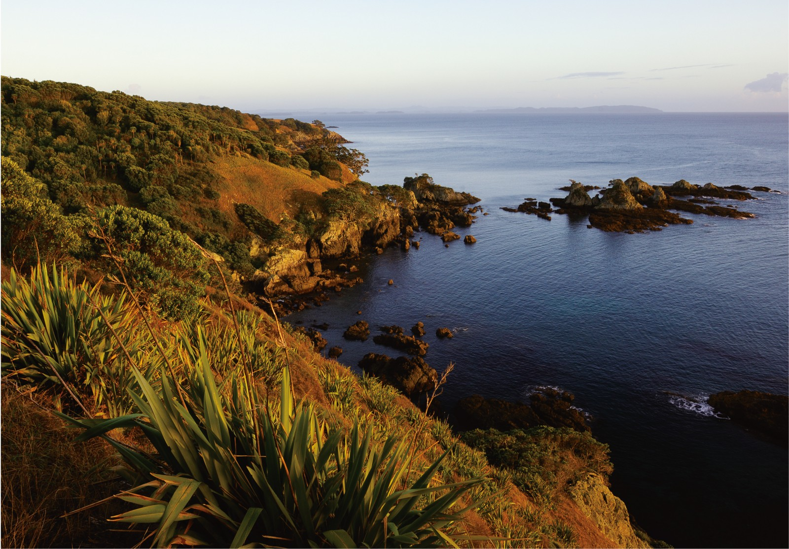 Looking north from a northern bay, Kawau Island shimmers on the horizon. In the region of The Arches, ragged cliffs eroded by sea and buffeted by high winds make access to Tiri's east coast difficult.