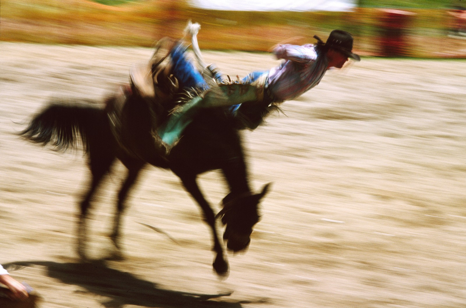 In this high-velocity, high-tension ballet, there are a hundred ways for an outlaw horse to lose his rider. Dave Wright heads over the handlebars for a taste of Rerewhakaaitu real estate in the saddle bronc event.