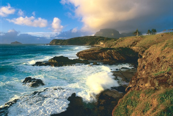 Although coral grows in the shallows off the eastern side of the island, it does not form a protective reef, leaving this the more exposed coast. Dramatic, uncluttered coastlines are one of the abiding attractions of Lord Howe Island.
