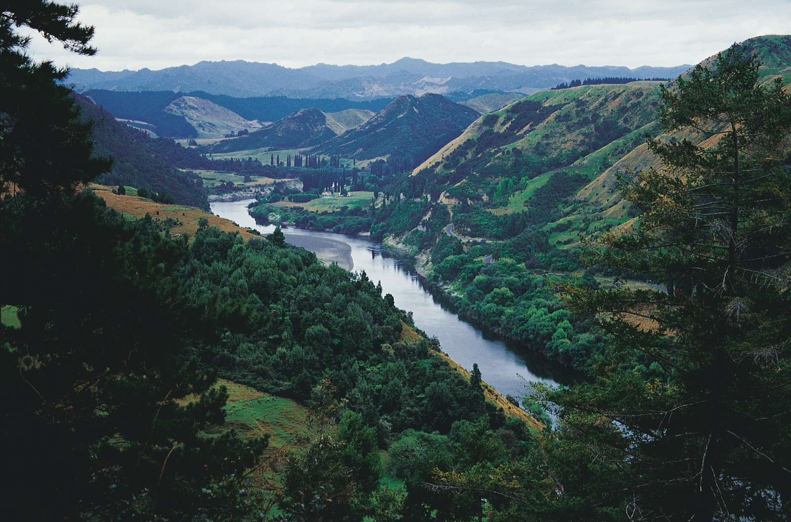 "The Whanganui River, extravagantly billed in early advertisements as New Zealand's ""Rhine,"" winds through the rugged backcountry west of the North Island volcanic plateau. Before the completion of the Main Trunk railway line, its sylvan waters bore travellers on the overland journey from Auckland to Wellington, and became a highlight of the Edwardian tourist trail."
