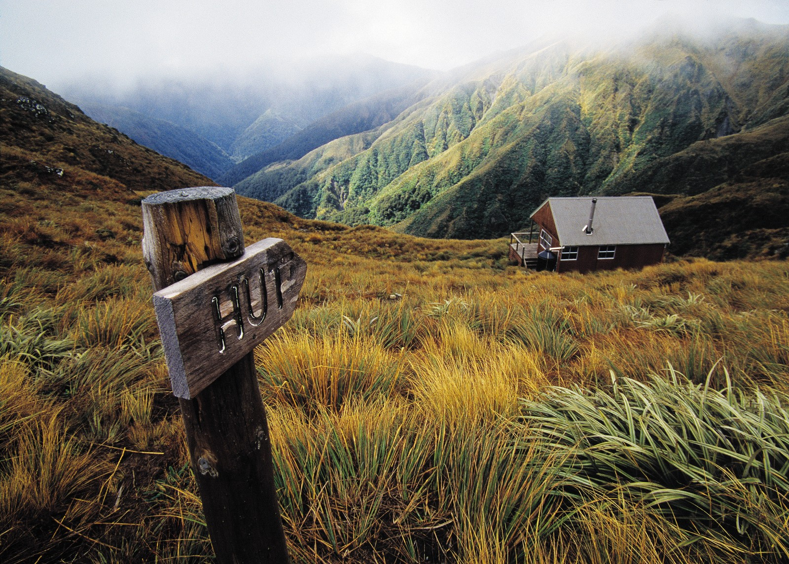 Home on the Range | New Zealand Geographic