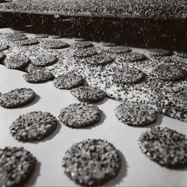 Hundreds and Thousands biscuits receive their topping.