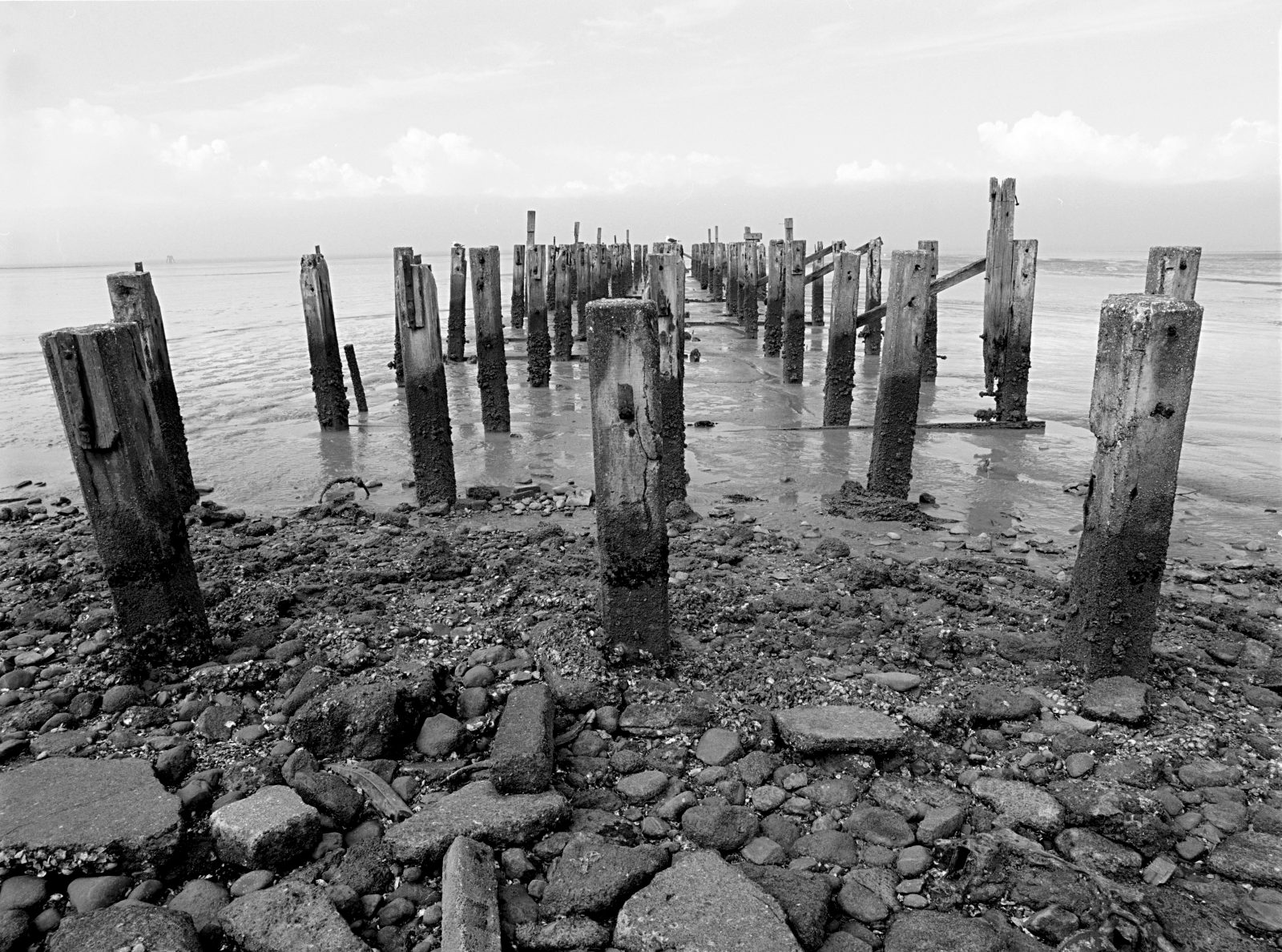 Today, the rotting piles of the Burke Street wharf are all that remains of one of several long deep-water wharves to service Grahamstown in its gold-boom heyday. Up to 200 vessels a month discharged their goods and passengers here, and much of the estimated £6,000,000 worth of gold recovered over the sixty-five year life span of the Thames goldfield crossed this wharf.