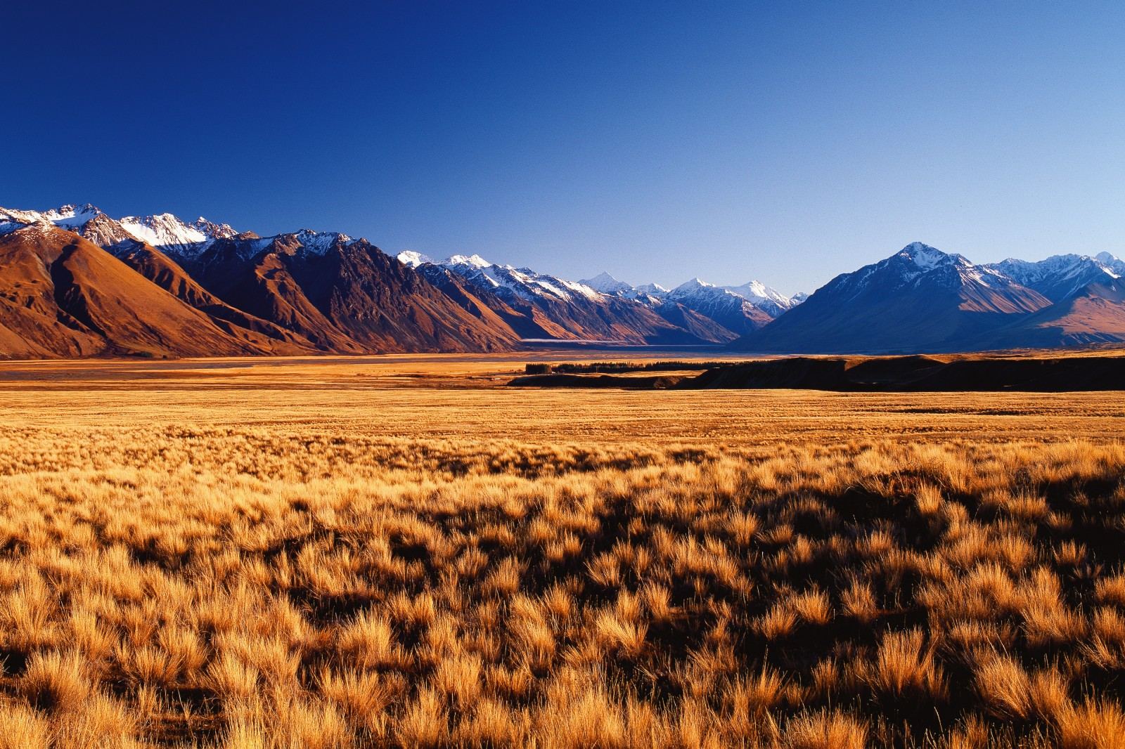 A sea of tussock extends towards the Godley River and the ramparts of Haszard Ridge. From its catchment on the Main Divide and the Godley Glacier, the braided river runs a gauntlet of evocative locations—Slip Gully, Kea Knob, Little Rough, Big Rough and Mistake Peak—to discharge into Lake Tekapo.