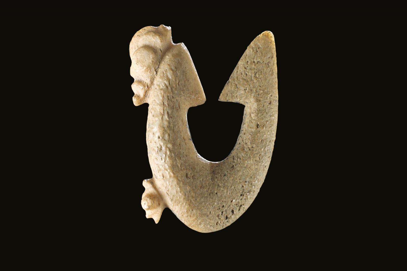 Double internal barb rotating hooks targeted small-mouthed midwater (pelagic) feeding fish such as trevally and tarakihi. Similar bone hooks over 1000 years old are known from sites in North and South America, and some more than 5000 years old in Europe, reflecting similar design solutions to deal with the weakness of the material.