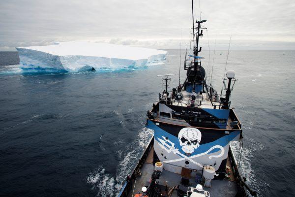 Pro008_20140219-TW-Steve-Irwin-Iceberg-03