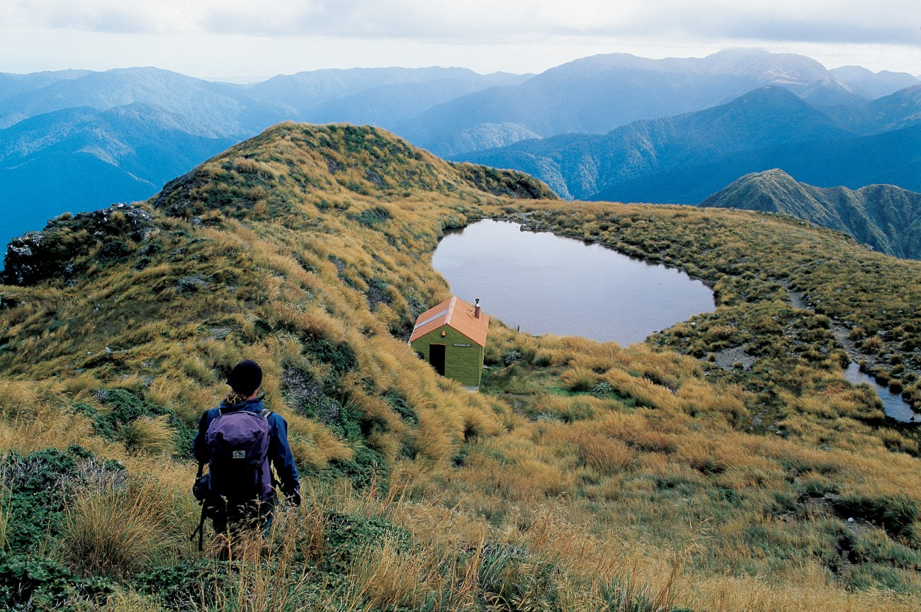 Southern Crossing: Tararua Forest Park | New Zealand Geographic