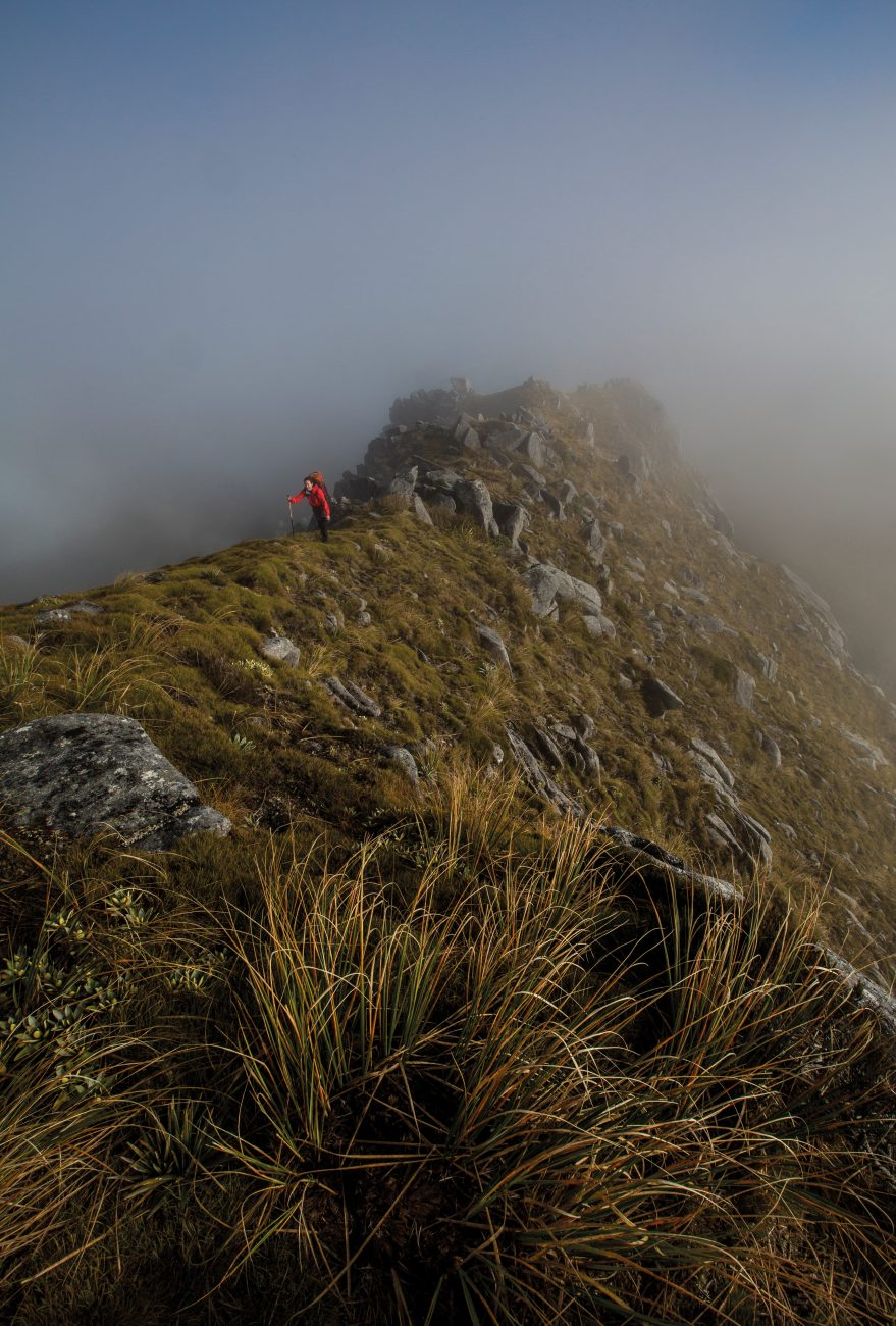 A tramper climbs the ridge near Mt Kelvin in the Paparoa Wilderness Area, which was established in 2002. Yet despite existing for nearly 15 years, few people looking up from the town of Westport over the distant mountains realise that it is an official wilderness area.