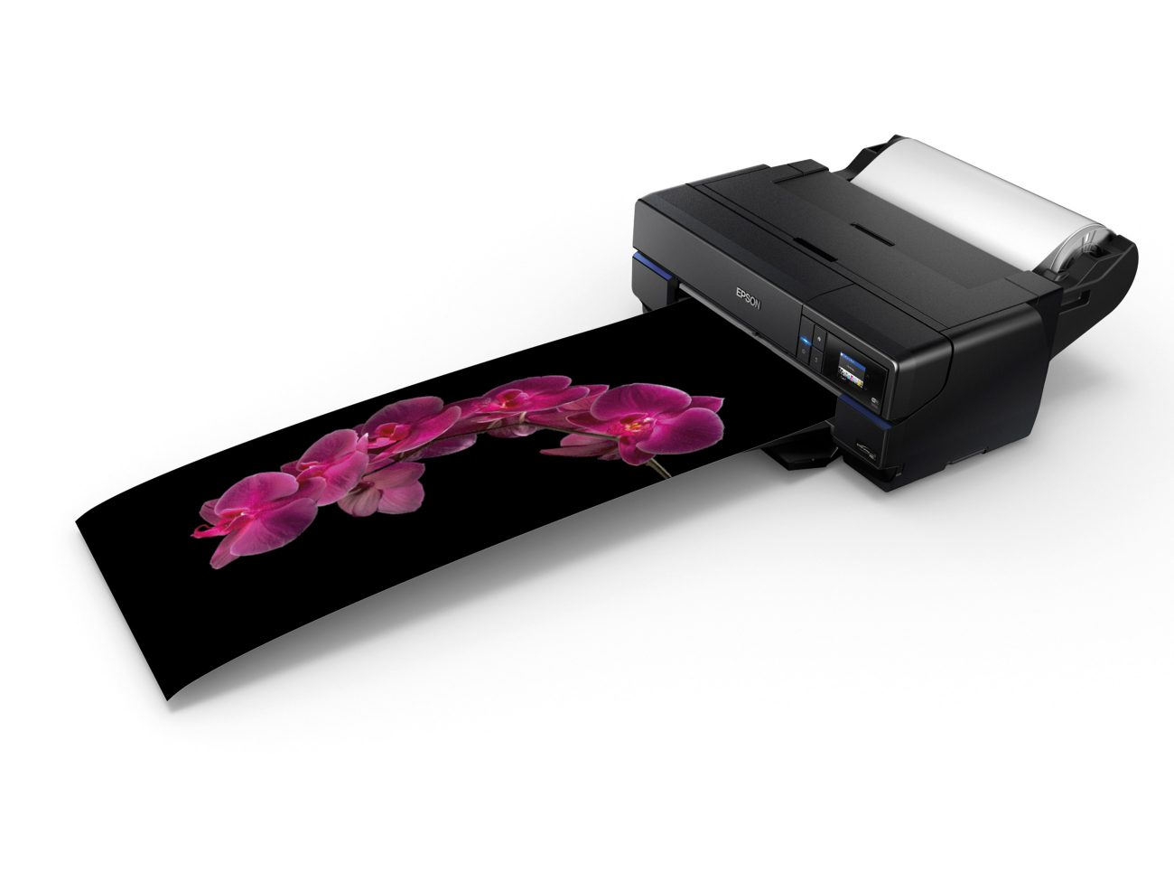 Epson Surecolor P800 A2   New Zealand Geographic