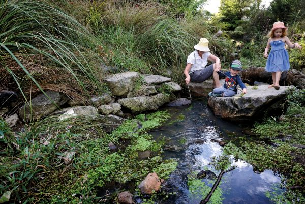 "The daylighting of a piped stretch of stream that flowed beneath La Rosa Reserve, in Green Bay, not only provided a natural amenity for locals such as Carol Keir—here ""fishing"" for watercress with her grandchildren Mila and Nate—it resulted in a doubling of the number of species present in the waterway."