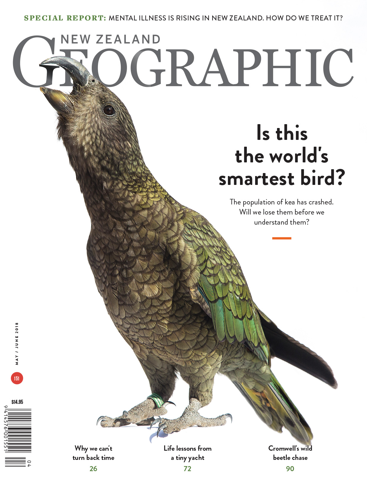 Birds of play | New Zealand Geographic